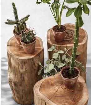 teak stool logs